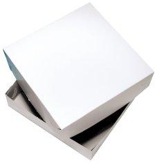 Zwanenhals taartdoos 40x40x10cm blanco