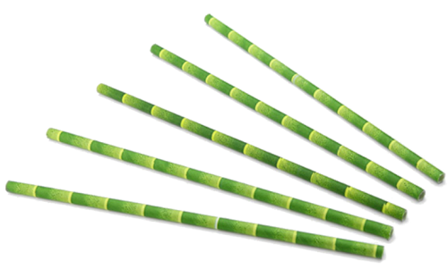 Rietjes papier bamboe look FSC 20cmx6mm