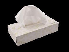 Mouchoirs en papier  21x20cm 2 épaisseurs blanc